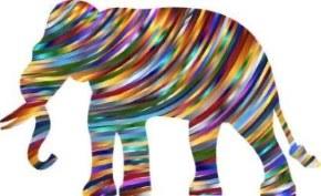 La fable du eCommerçant qui ne vendait pas d'éléphant